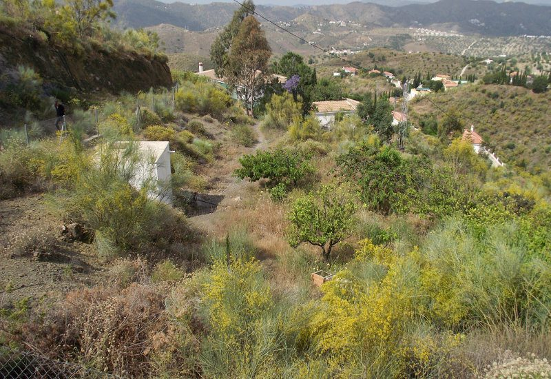 Garden and land boundary of Casa La Galivanes in the Axarquía